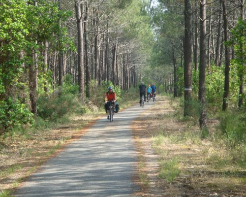 Piste cyclable Landes