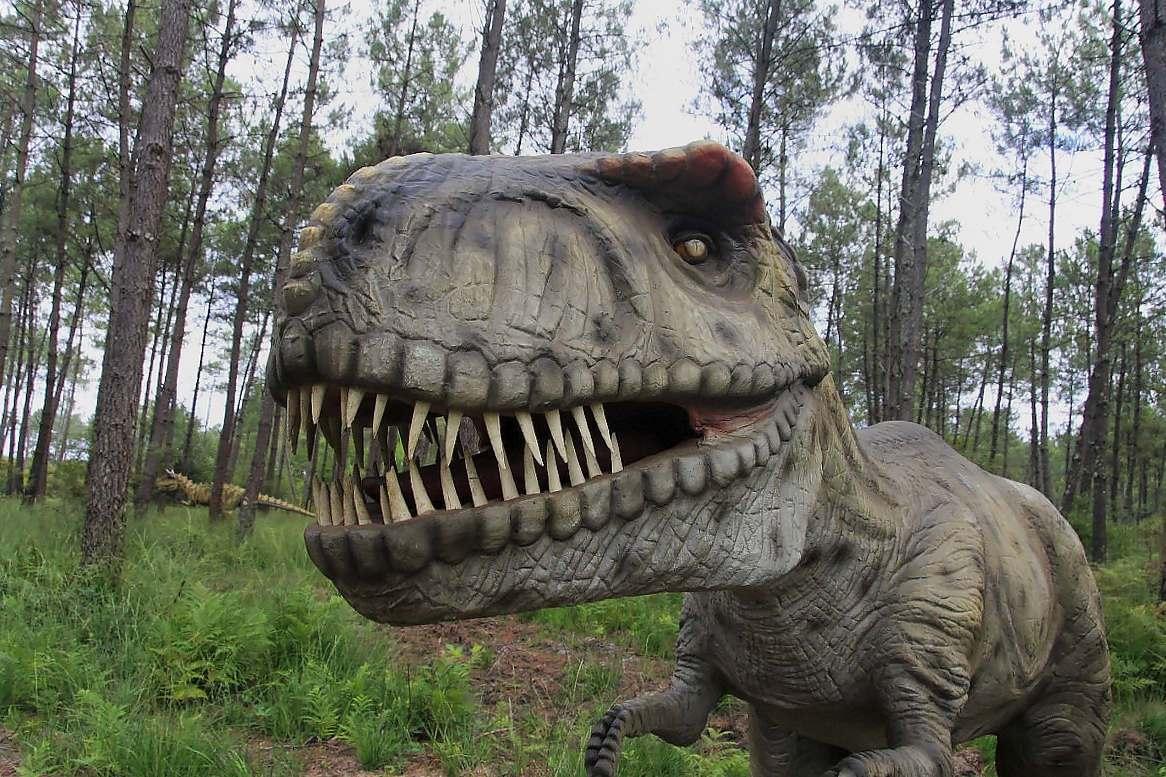 Dinosaures parc-Azur-OTI LAS-tyrannosaurus