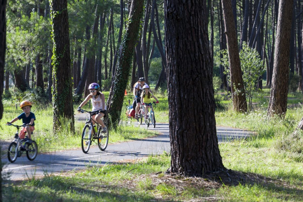 biscarrosse-pistes-cyclables-foret