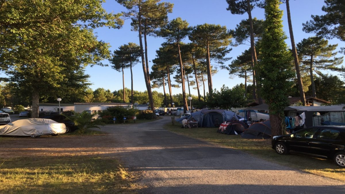 camping-les-echasses-allee